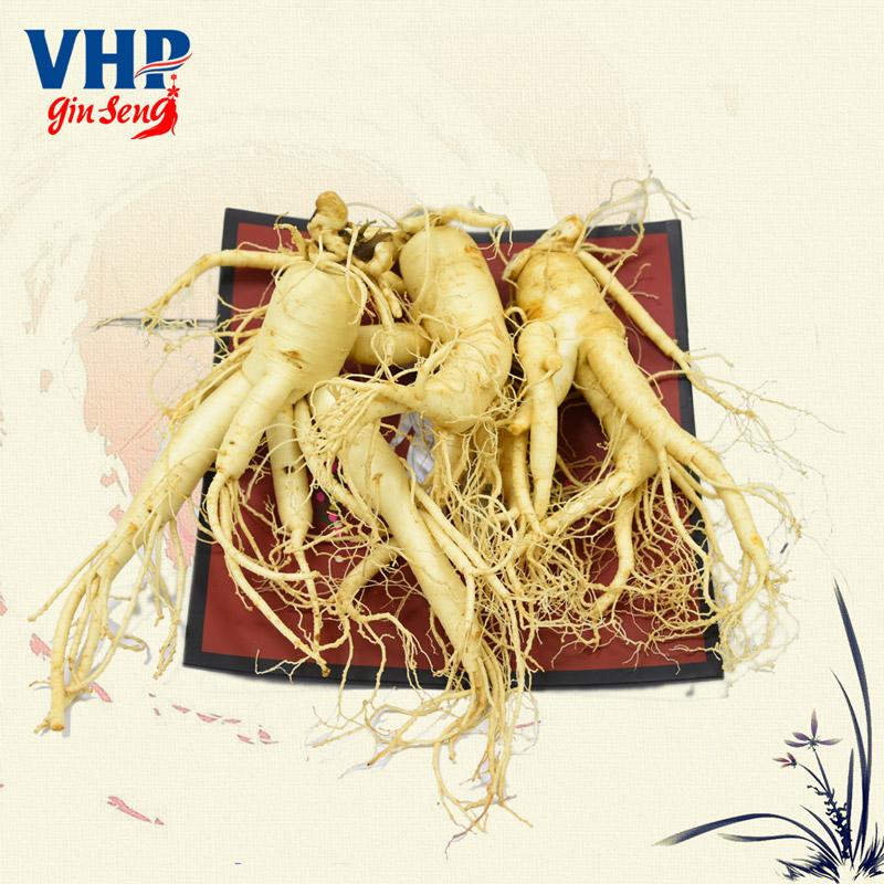vinhan-sam-tuoi-han-quoc-3-cu-1kgennhan-sam-tuoi-han-quoc-3-cu-1kg